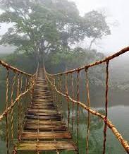 Life: Il ponte…