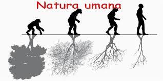 Life:  natura umana è necessario nutrire cuore, mente e spirito…