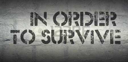 Quattro Strategie Per Sopravvivere Al Peggio…